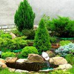 Альпийская горка на даче своими руками: какие растения нужны?