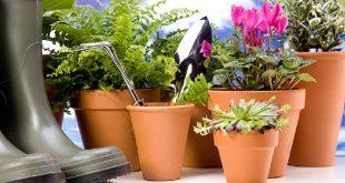 Лунный посевной календарь на 2017 год садовода и огородника таблица