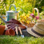 Лунный посевной календарь на сентябрь 2017 года садовода и огородника