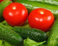 Подкормка дрожжами: помидоры и огурцы
