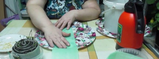 Юлия Миняева посев лука чернушки в улитку