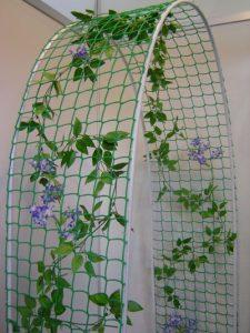 Пергола для вьющихся растений своими руками