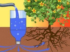 Как сделать капельный полив из пластиковых бутылок