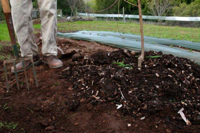 Чем удобрить землю осенью если нет навоза