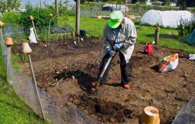 Чем удобрять землю осенью под перекопку