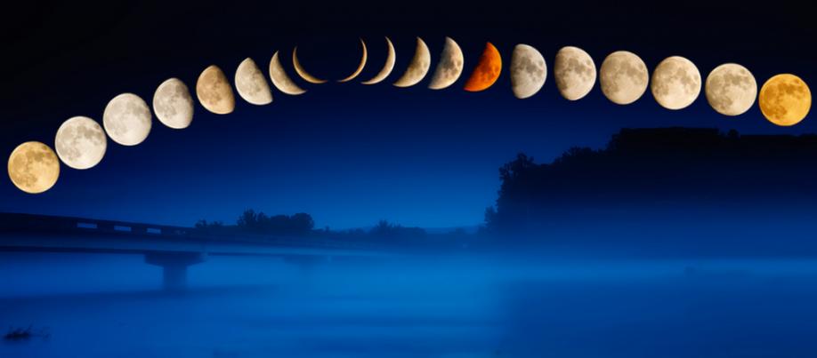 Лунный календарь на апрель 2018 года цветовода