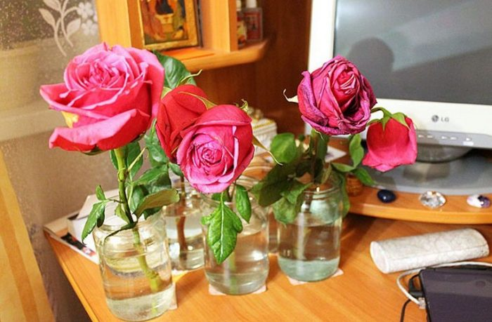 Как сделать что бы розы стояли 899