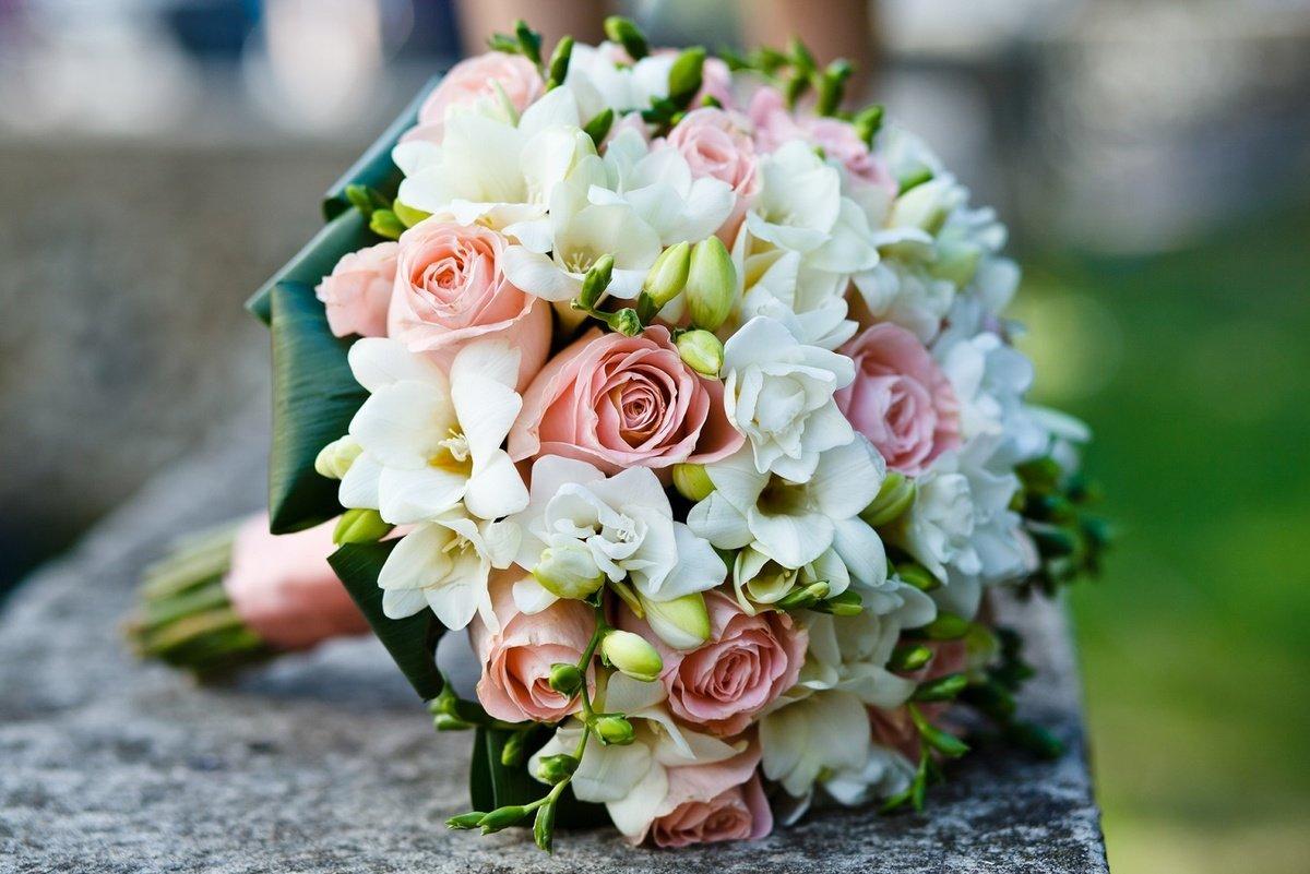 Фрезии цветы фото букеты
