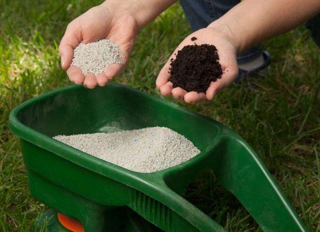 Селитра аммиачная удобрение применение на огороде