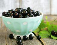 Как правильно посадить чёрную смородину осенью?