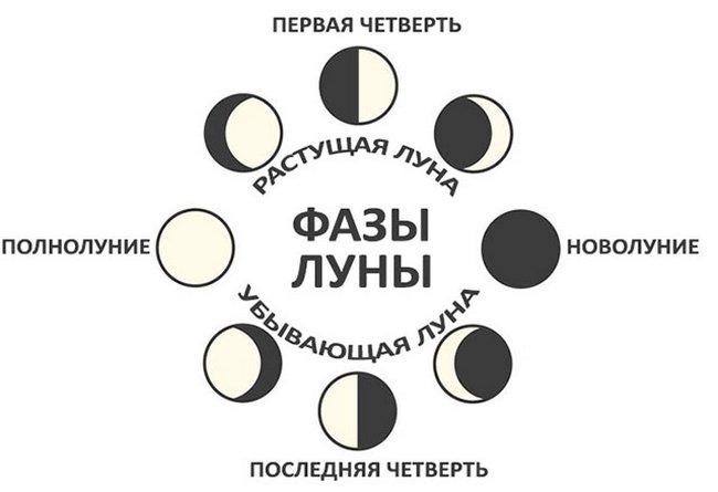 Лунный посевной календарь на 2019 год таблица