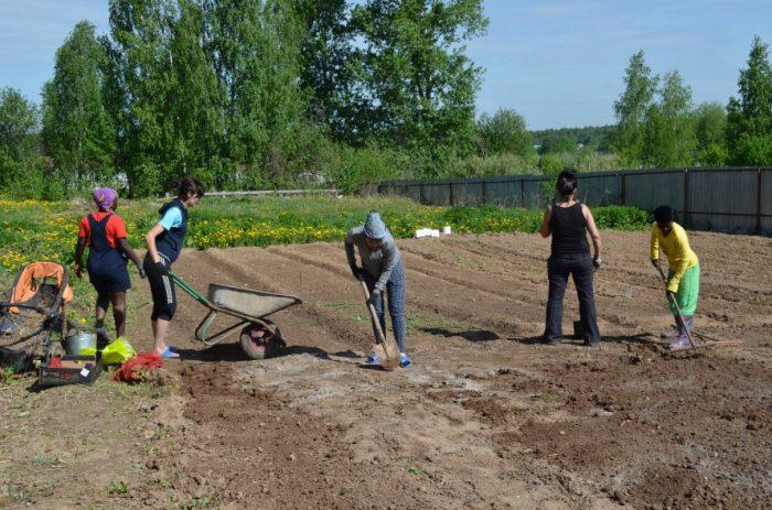 Лунный посевной календарь на апрель 2019 года садовода и огородника таблица