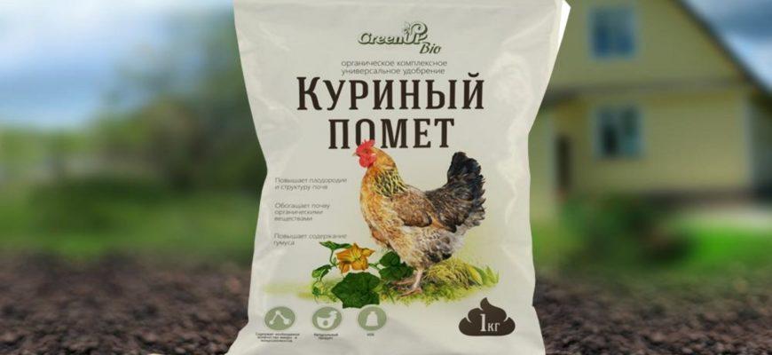 Как разводить куриный помет для подкормки растений