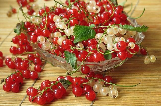 Желе с красной смородины на зиму рецепты с фото