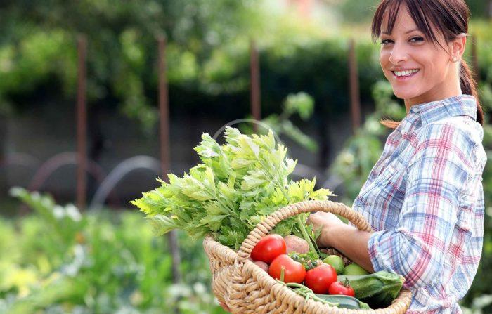 Лунный календарь на август 2019 года садовода и огородника цветовода