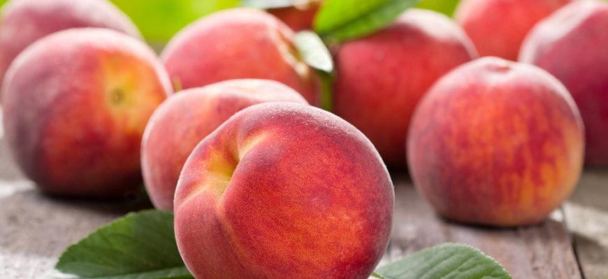 Обрезка персика осенью схема для начинающих