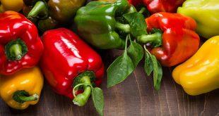 Как обработать семена перца перед посадкой на рассаду перекисью водорода
