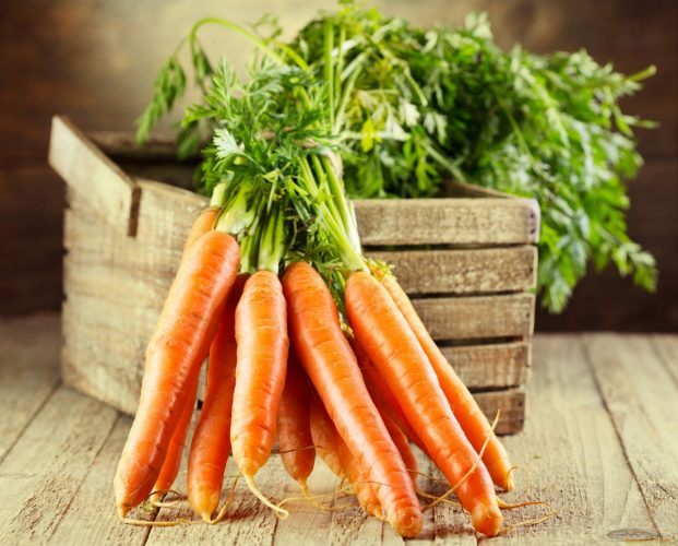 Морковь посадка и уход в открытом грунте весной по лунному календарю